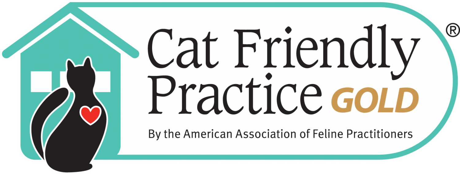 Cat Friendly Practice - GOLD